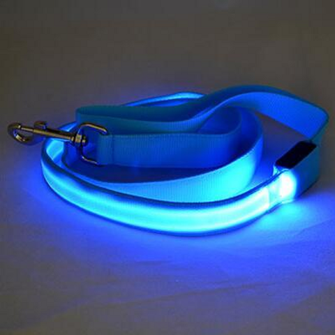 Road safety dog leashes with led light (1st gen)