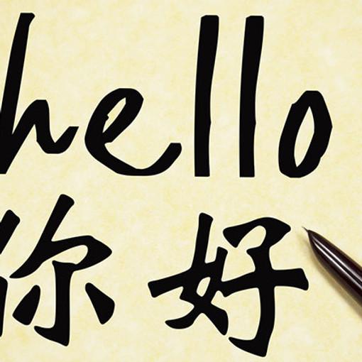 Mandarin Classes Individual Tutoring
