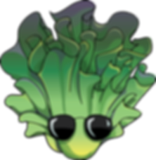 Lettuce Head version 1-c.png