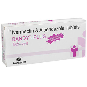 이버멕틴6mg+알벤다졸400mg 반디-플러스