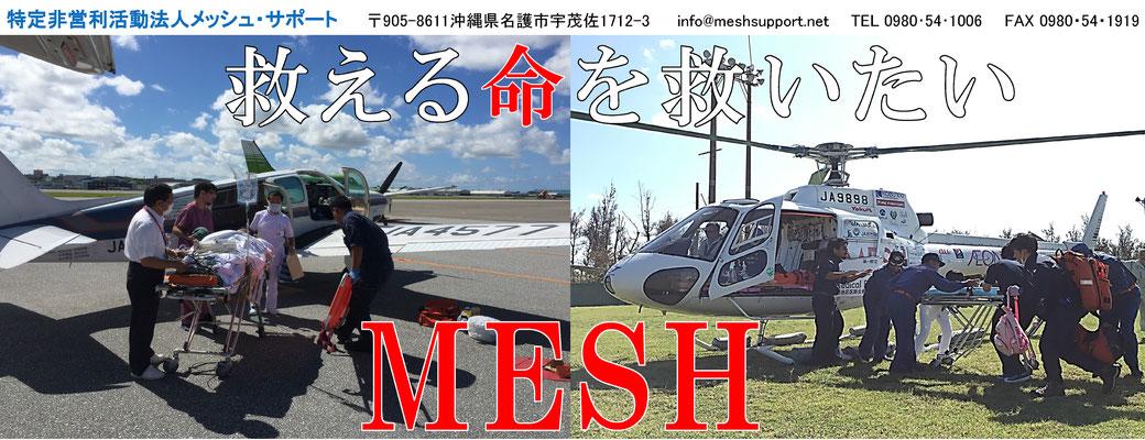 mesh image