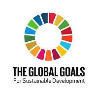 SDG LOGO P .jpg