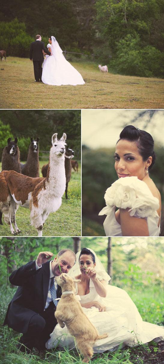 romantic-farm-wedding-7.jpg