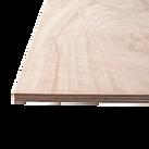ELINE Plywood 2400X1200MM