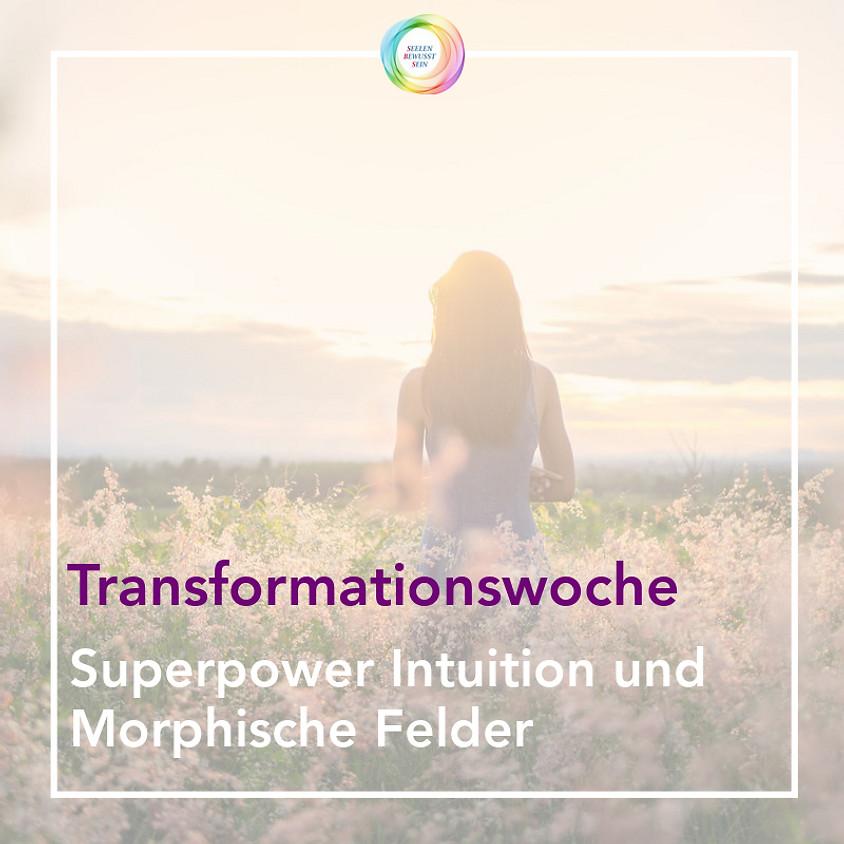 🔔Transformationswoche🔔    Superpower Intuition und Morphische Felder