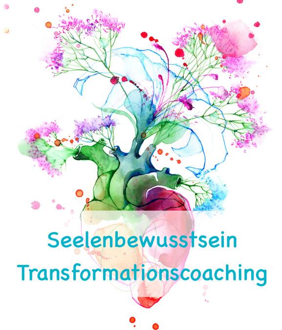 Transformations - Coaching