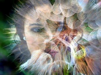 Wie Du Deine Potenziale erkennst und Deine innere Haltung ändern kannst...   Teil II