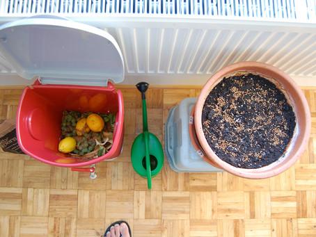 6 ventajas del compostaje doméstico