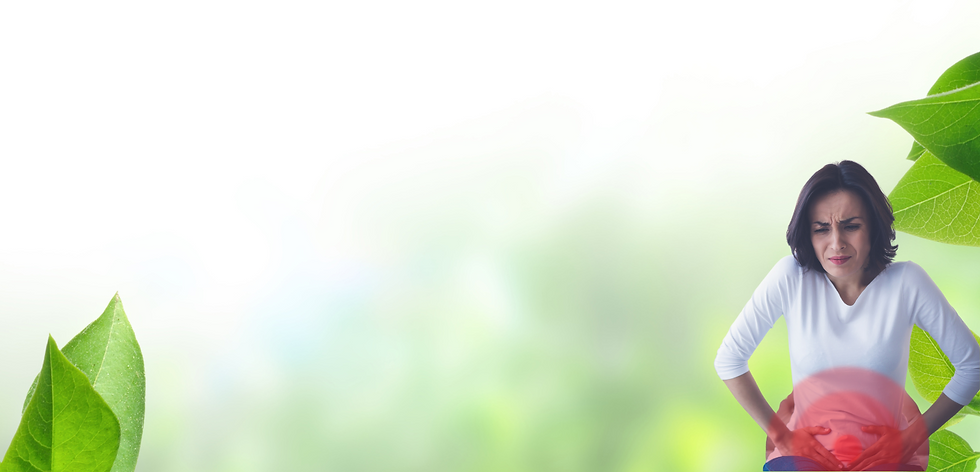banner (8).png