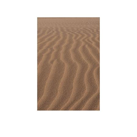 5. The Dune That Met Our Knees.jpg