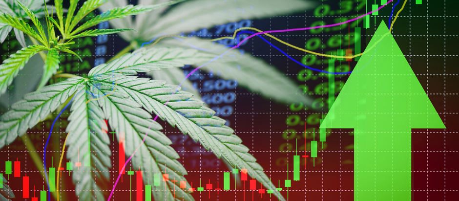 The latest CBD pricing shift might shock you