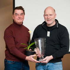 The Andy Phillips Vase 2018 - Best Phragmipedium Species