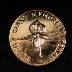 The Jim Binks Medal