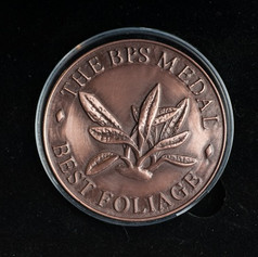 The BPS Medal