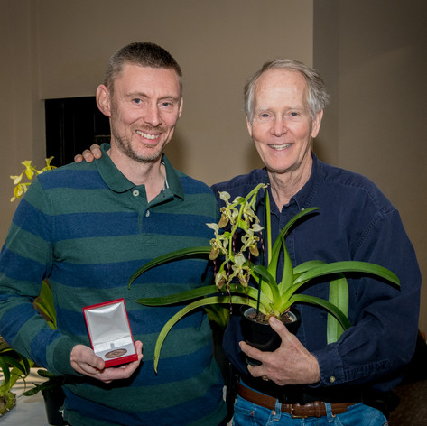 Ratcliffe Award 2020 - Best Paphiopedilum Species