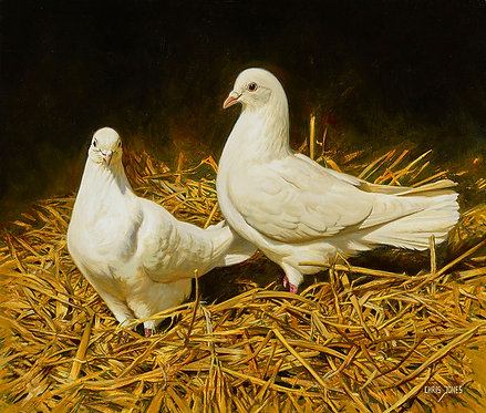 Greetings Card - Doves