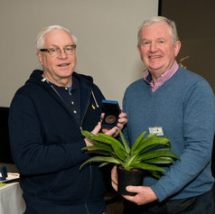BPS Award Winner 2019 for Best Foliage