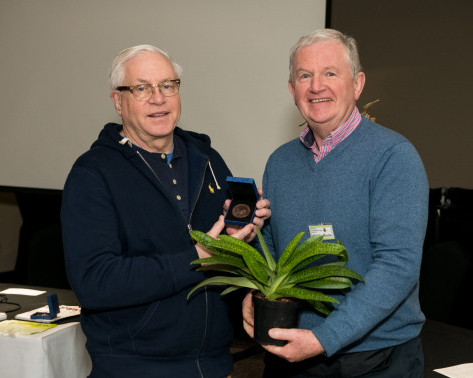 BPS Award Winner 2019 for Best Foliage