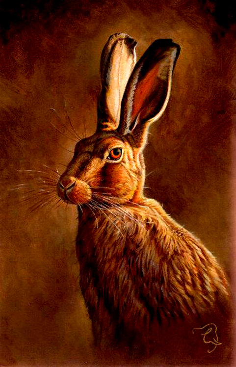 Greetings Card - Hare