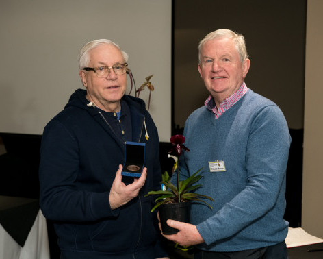 Ratcliffe Award 2019 - Best Novelty Paphiopedilum Hybrid
