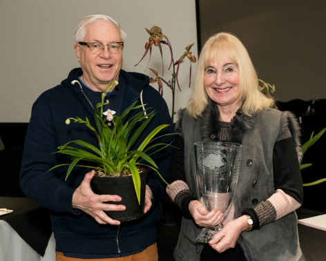 The Andy Phillips Vase 2019 - Best Phragmipedium Species