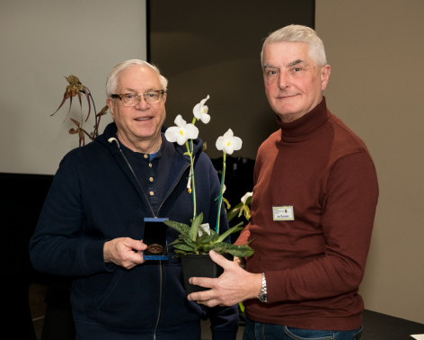 Ratcliffe Award 2019 - Best Paphiopedilum Species