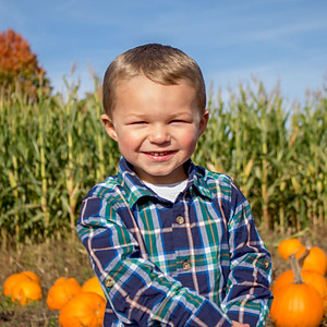 Sheffer Fall Family Photos