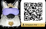 8.AmazonQRRLV E.png