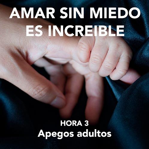 HORA 3 - AMAR SIN MIEDO ES INCREÍBLE - APEGOS ADULTOS