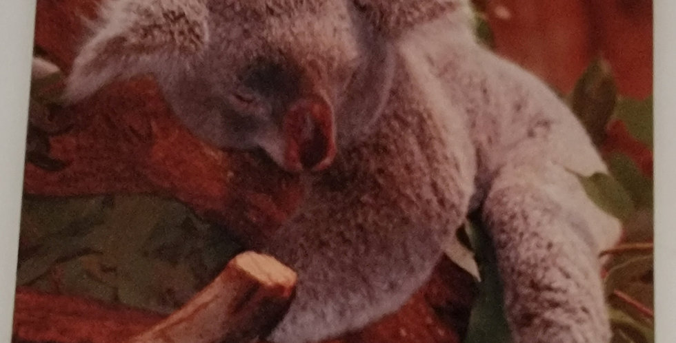 "Mouse Pad Koala Design 7.75"" x 9.25"" x 1/4"" Thick"