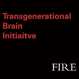 official-icon-FIRE-NS-TBI.png