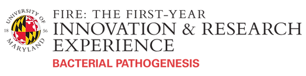 official-logo-FIRE-BP.png