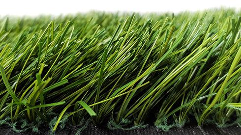 Grass-XPNb.jpg