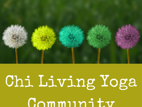 The importance of a yoga community