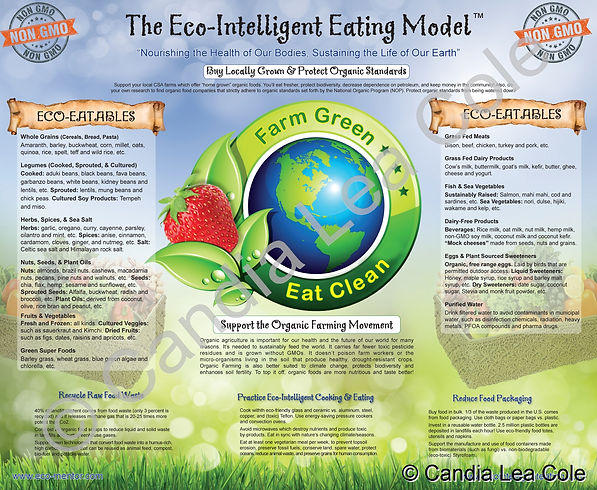 eco-intelligent eating model infographic poster