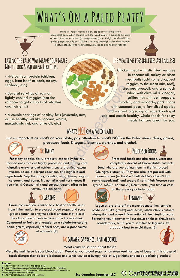 what's on a paleo plate meal infographic poster