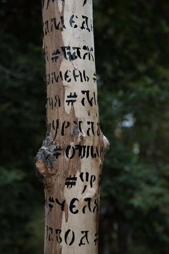 Totem (4).jpg
