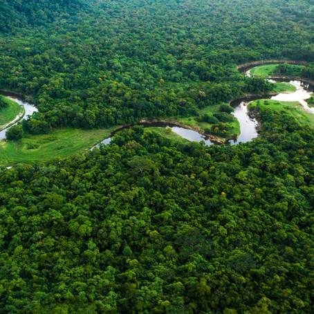Amazônia é um grande polo de geração de energia solar