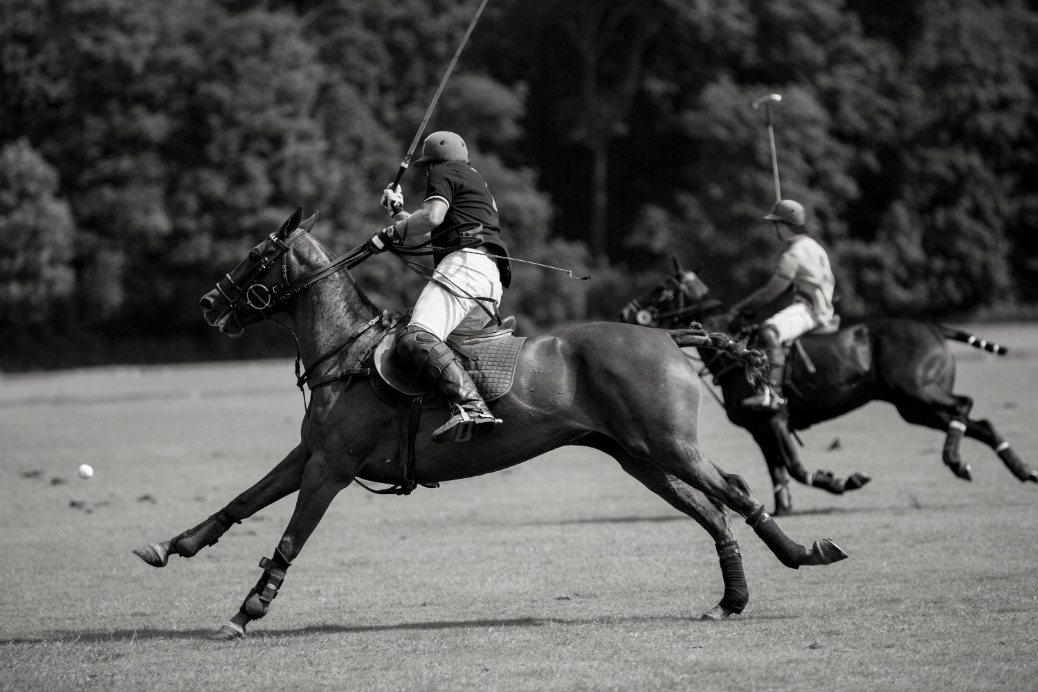 Watch Polo in London