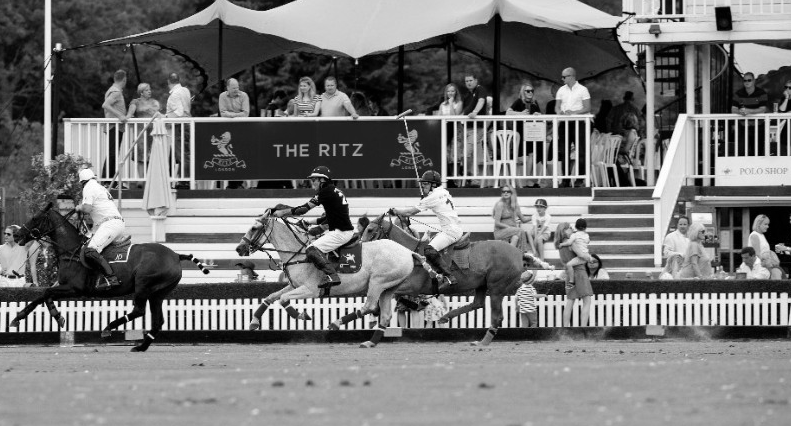 London VIP Polo Match Experience