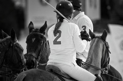 Learn to play Chukka polo in London