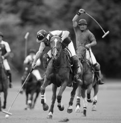 London Polo lessons