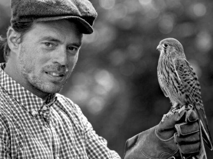 London Falconry and Hawking
