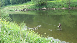 London Salmon Fishing