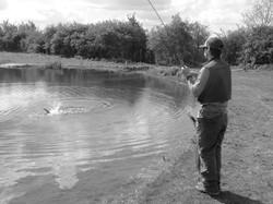 Stillwater Fly Fishing in London