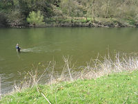 Salmon fishing the River Wye