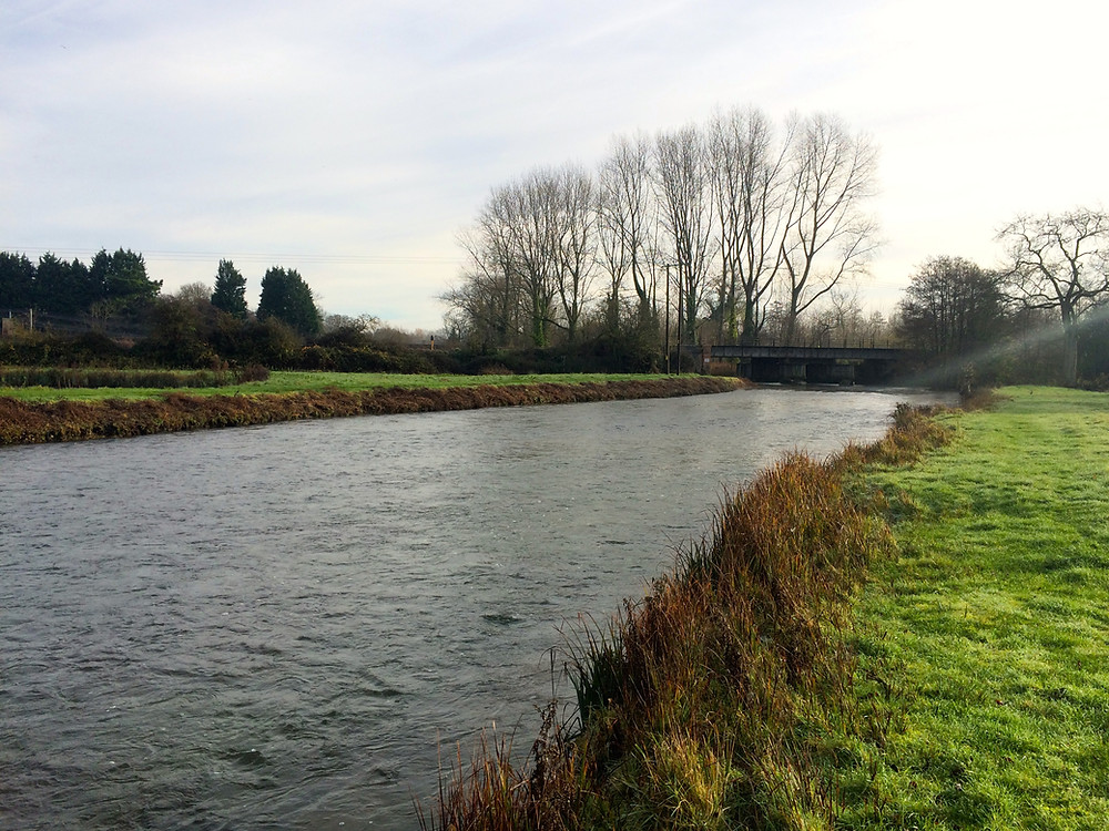 Grayling fishing, RIver Test