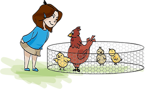 BALADE_GOUT_2019_FILLE_POULE.png