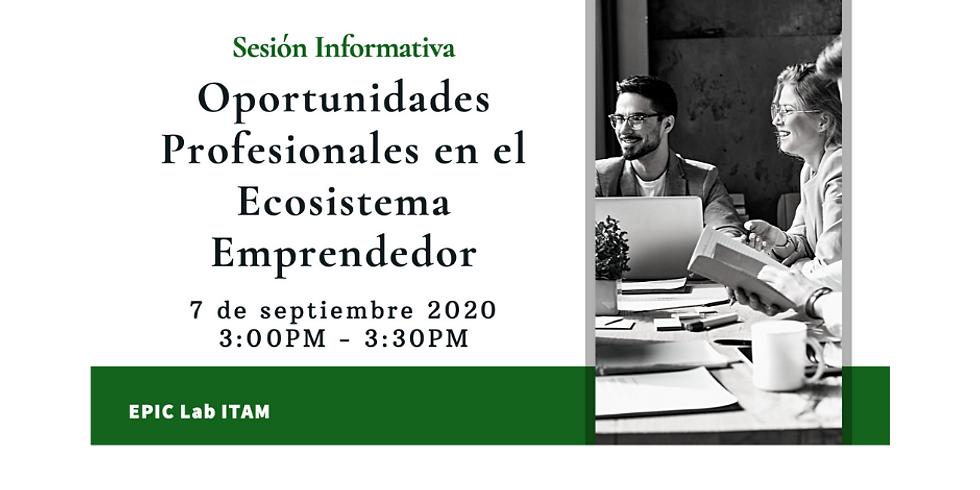 Sesión informativa Plataforma de Oportunidades Profesionales