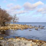 Hanöbuktens strand